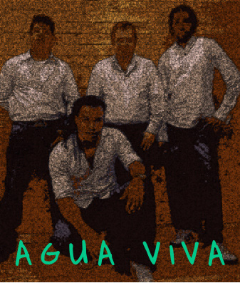 Agua Viva Cuban Son band